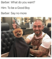 """<p>say no more via /r/wholesomememes <a href=""""http://ift.tt/2jHGKc9"""">http://ift.tt/2jHGKc9</a></p>: Barber: What do you want?  Him: To be a Good Boy  Barber: Say no more  sweetkaratemoves <p>say no more via /r/wholesomememes <a href=""""http://ift.tt/2jHGKc9"""">http://ift.tt/2jHGKc9</a></p>"""