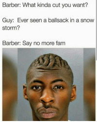 Bruh how 😯😂😂: Barber: What kinda cut you want?  Guy: Ever seen a ballsack in a snow  storm?  Barber: Say no more fam Bruh how 😯😂😂