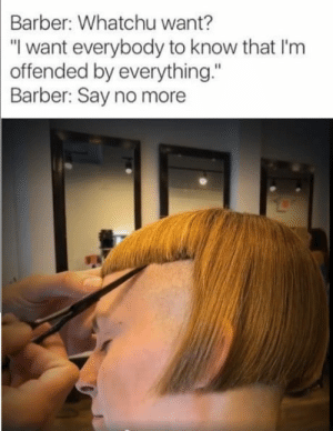 """I dont want to live on this planet anymore: Barber:  Whatchu want?  """"I want everybody to know that I'm  offended by everything.""""  Barber: Say no more I dont want to live on this planet anymore"""