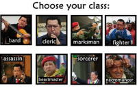 bard: bard  assassin  Choose your class:  cleric  marksman  fighter  Sorcerer  beastmaster  necromancer