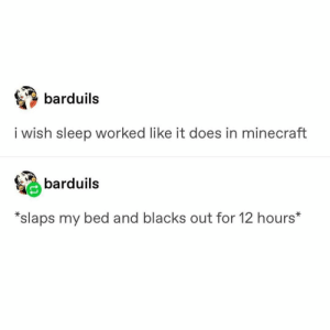 : barduils  i wish sleep worked like it does in minecraft  barduils  *slaps my bed and blacks out for 12 hours*