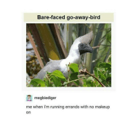 Clique, Funny, and Makeup: Bare-faced go-away-bird  megbiediger  me when im running errands with no makeup  On MATPAT AND STEPH ARE IN THE NEW FINEBRO'S COUPLES REACT AJQPWUWODBJALANSKAKKS MY OTTTTTPPPPPP marvel fandom textpost funnypost tumblr clean doctorwho hungergames mockingjay text jeremyrenner hawkeye avengers tumblrpost meme tumblr bandom patd panicatthedisco brendonurie clean funny funnypost music bands falloutboy clique top twentyonepilots memes joshdun tylerjoseph hamilton