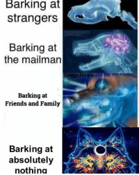 Dank, Family, and Fire: Barking  at  strangers  Barking at  the mailman  oggoNews  Barking at  Friends and Family  Barking at  absolutely  nothino -memed Follow my back up @dankest_memes_m8_v2 in case I get taken down again ❤ . You should also follow my other pages @hiphop_shitposting @incomprehensible_memes . And my passion project @lonely_aesthetics_of_my_heart . Drop a follow and tag a friend 👋 . ayyylamo Kush edgy edgyaf edgymeme meme memes fml dank dankmemes truu banter lovenotthots filthyfrank roasted Turnt vapourware joker squad cancer fire aesthetics comedy humour