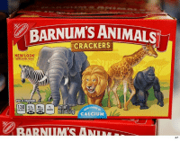 Animals, Memes, and Free: BARNUM'S ANIMALS  CRACKERS  NEW/ LOOK  Same Great Taste  PER 14 CRACKERS  2012501160 CALCIUM  CALDRIES SAT FA  BARNIIM  AP They're FREE! tmz animalcrackers