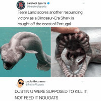 Anaconda, Dinosaur, and Memes: Barstool Sports  @barstoolsports  100  Team Land scores another resounding  victory as a Dinosaur-Era Shark is  caught off the coast of Portugal  pablo thiccasso  @PabloPiqasso  DUSTIN U WERE SUPPOSED TO KILL IT,  NOT FEED IT NOUGATS Gotdamit Dustin 🦎🐊