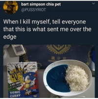 Bart Simpson, Memes, and Bart: bart simpson chia pet  @PUSSYRIOT  When I kill myself, tell everyone  that this is what sent me over the  edge  レンジ対応  SONIC  CURRY i think eating that would do the job