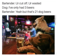 """Dank, Meme, and Yeah: Bartender: Ur cut off. Ur wasted  Dog: I've only had 3 beers  Bartender: Yeah but that's 21 dog beers  LIV <p>Dog beers … … . via /r/dank_meme <a href=""""https://ift.tt/2IOX9cz"""">https://ift.tt/2IOX9cz</a></p>"""