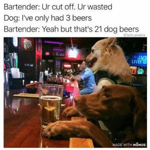 38 Dog Memes That Are Pretty Much Impossible To Get Through Without Laughing - JustViral.Net: Bartender: Ur cut off. Ur wasted  Dog: I've only had 3 beers  Bartender: Yeah but that's 21 dog beers  @tank.sinatra  REBEL  PA  EAT  JAG  LIVES HE  MADE WITH MOMUS 38 Dog Memes That Are Pretty Much Impossible To Get Through Without Laughing - JustViral.Net