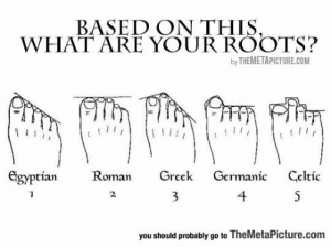 lolzandtrollz:  Toe Roots: BASED ON THIS,  WHAT ARE YOUR ROOTS?  by THEMETAPICTURE.COM  Egyptian  Roman  Greek  Germanic  Celtic  4  S  2  you should probably go to TheMetaPicture.com lolzandtrollz:  Toe Roots