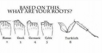 Germanic: BASED ON THIS  WHAT ARE YOUR ROOTS?  Roman  Greek  Germanic Celtic  Turkish