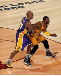 Basketball, Finals, and Memes: Basketball's biggest shortcoming is that Kobe and Lebron never faced off against each other in the NBA Finals. All we have is the should have, could have and would have.  - stepbacktrey