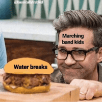 Memes, Chicken, and Kids: @bassicallytrebled  Marching  band kids  Water breaks 'Link Stares At A Chicken Sandwich' Memes Represent Your Untimely Desires #RhettAndLink #ChickenSandwich #ObjectLabelMemes #TrendingMemes #FunnyMemes
