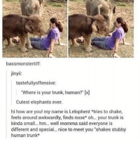 """Cute, Love, and Memes: bassmonstertiff:  jinyii:  tastefully offensive:  """"Where is your trunk, human?"""" (x  Cutest elephants ever.  hi how are you! my name is Lelophent tries to shake,  feels around awkwardly, finds nose oh... trunk is  kinda small. hm... well momma said everyone is  different and special... nice to meet you """"shakes stubby  human trunk This is so cute!!!!!! I love it so much! 😭💕 • • Want a shoutout? DM for info. • • { funnytumblr textposts funnytextpost tumblr funnytumblrpost tumblrfunny followme tumblrfunny textpost tumblrpost haha shoutout}"""
