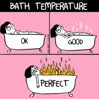Memes, 🤖, and Bath: BATH TEMPERATURE  OK  ry  PERFECT Just right.
