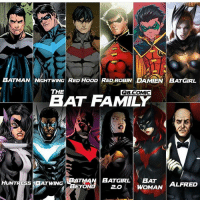 Batman, Family, and Memes: BATMAN NIGHTWING RED HOOD RED ROBIN DAMIEN BATGIRL  THE  QB.COMIC  BAT FAMILY  HUNTRESSBATWINGB  BATMAN BATGIRL BAT  ALFRED  EYO  2.0 Who's your favourite member of the batfamily ? By @q8.comic dc dccomics dceu dcu dcrebirth dcnation dcextendeduniverse batman superman manofsteel thedarkknight wonderwoman justiceleague cyborg aquaman martianmanhunter greenlantern theflash greenarrow suicidesquad thejoker harleyquinn