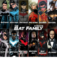 Batman, Family, and Memes: BATMAN \ NIGHTWING| RED HOOD RED ROBIN I DA MİENİ BATGIRL  THE  QB.COMIC  BAT FAMILY  HUNTRESS BATWING  I BATMAN | BATGIRL | EAT  EYON  2.0 WOMAN ALFRED Who's your favourite member ? By @q8.comic Blackpanther Mcu Marvel dc dccomics dceu dcu dcrebirth dcnation dcextendeduniverse batman superman manofsteel thedarkknight wonderwoman justiceleague cyborg aquaman martianmanhunter greenlantern venom spiderman infinitywar avengers avengersinfintywar ironman thanos