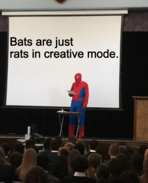 Bats, Mode, and Just: Bats are just  rats in creative mode. And thats a fact.