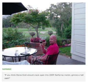 """stone cold glass of wine - Meme by derekclark0018 :) Memedroid: battledad:  """"If you think Stone Cold should crack open this 2009 California merlot, gimme a hell  yeah! stone cold glass of wine - Meme by derekclark0018 :) Memedroid"""