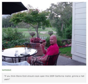 """Stone Cold Steve Austing Drinking Wine 