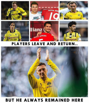 Memes, Nike, and Bayern: BAYERN MUN  NEVON  NIKE  lianz  eEVOnI  FAYERM MONCHEN  eVB  EVONIK  PLAYERS LEAVE AND RETURN..  FOOTB  HRENA  RVB  CEVON  BUT HE ALWAYS REMAINED HERE Marco Reus ❤️😍 https://t.co/97ceGdin2f