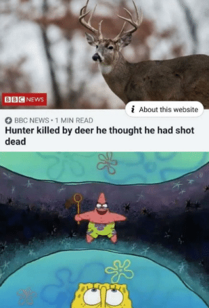 Survival of the fittest: BB  NEWS  i About this website  BBC NEWS 1 MIN READ  Hunter killed by deer he thought he had shot  dead Survival of the fittest