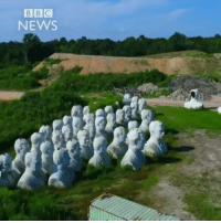 America, Donald Trump, and Future: BBC  NEWS rp @bbcnews - 4JULY: The effigies of 43 US presidents have been left to crumble in a Virginia field, after a history theme park went bust. Now local farm owner Howard Hankins is rescuing them and hopes to get heads of presidents Barack Obama and Donald Trump made for a future park. history presidents us america virginia farmer farming themepark fun heads statues art bbcshorts bbc news bbcnews @bbcnews @pmwhiphop