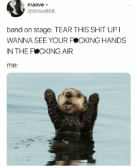 Funny, Shit, and Band: @bbiss666  band on stage: TEAR THIS SHIT UP  WANNA SEE YOUR F CKING HANDS  IN THE F CKING AIR  me Warning: Do NOT follow @donut if you're easily offended 🤬🔞