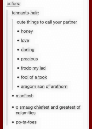 Cute, Love, and Precious: bcfurs:  tennants-hair:  cute things to call your partner  e honey  love  darling  * precious  e frodo my lad  . fool of a took  e aragorn son of arathorn  . manflesh  . o smaug chiefest and greatest of  calamities  . po-ta-toes Things to call your partner