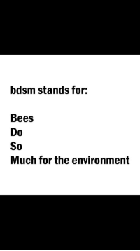 Bdsm, Bees, and For: bdsm stands for:  Bees  Do  0  So  Much for the environment <p>Bees ❤️</p>