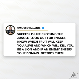 Be a Lion 🦁 and if an enemy enters your territory, destroy them! https://t.co/sGUdThGV6w: Be a Lion 🦁 and if an enemy enters your territory, destroy them! https://t.co/sGUdThGV6w