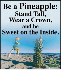 Memes, Pineapple, and Compassion: Be a Pineapple:  Stand Tall,  Wear a Crown.  and be  Sweet on the Inside.  Understanding  Compassi Understanding Compassion ❤️