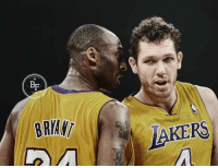 """""""Honestly, the hardest one to guard was in practice. №24. Kobe Bryant. There was nothing like trying to guard him on that wing when you were iso-ed.  You were literally helpless. He was such an asshole. He'd tell you about too. He wasn't just going; he treated practice as games.   It was no different to him. If you're competing on the court, he was trying to kill you and he was telling you about it.   As a man, it's tough to hear someone tell you about how they're going to kill you and then [watch them] kill you.""""  - LA Lakers coach Luke Walton on the hardest player he ever had to guard in the NBA  #MambaMentality (h/t Bill Simmons)  #LakersSire25 #WWLG4L: BE  BRIAN  LAKERS """"Honestly, the hardest one to guard was in practice. №24. Kobe Bryant. There was nothing like trying to guard him on that wing when you were iso-ed.  You were literally helpless. He was such an asshole. He'd tell you about too. He wasn't just going; he treated practice as games.   It was no different to him. If you're competing on the court, he was trying to kill you and he was telling you about it.   As a man, it's tough to hear someone tell you about how they're going to kill you and then [watch them] kill you.""""  - LA Lakers coach Luke Walton on the hardest player he ever had to guard in the NBA  #MambaMentality (h/t Bill Simmons)  #LakersSire25 #WWLG4L"""