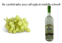 Dank, Meme, and Memes: Be careful who you call ugly in middle school!  RAPE BRAN credits to Dominant Albanian Memes  ~The Ado