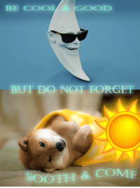 """Reddit, Cool, and Good: BE COOL  GOOD  BUT DO NOT FORGET  SOOTH & COMF <p>[<a href=""""https://www.reddit.com/r/surrealmemes/comments/8nb2hn/you_are_cared_for/"""">Src</a>]</p>"""