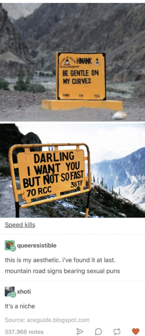 Puns, Aesthetic, and Blogspot: BE GENTLE ON  MY CURVES  HMK 111  753  EI  DARLING  I I WANT YOU  JTF  70 RCC  Speed kills  queeresistible  this is my aesthetic. i've found it at last.  mountain road signs bearing sexual puns  xhoti  It's a niche  Source: aceguide.blogspot.com  537,968 notes Road sign innuendo
