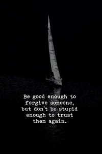 Good, Them, and Trust: Be good enough to  forgive someone,  but don't be stupid  enough to trust  them again