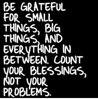 Memes, 🤖, and Grateful: BE GRATEFUL  FOR SMALL  THINGS, BIG  THINGS AND  EVERTHING IN  BETWEEN COUNT  YOUR BLESSINGS,  NOT YOUR  PROBLEMS Good Morning! Be Grateful and Thankful! Have A Blessed Day Everyone!