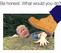 Memes, 🤖, and Stomp: Be honest.  What would you do?  GLODinuendhoe Straight waffle stomp his shit 😂😂😂 deadass repost @chris31576