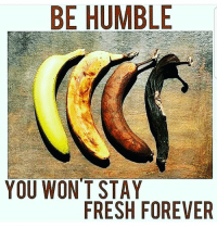 Fresh: BE HUMBLE  YOU WON'T STAY  FRESH FOREVER