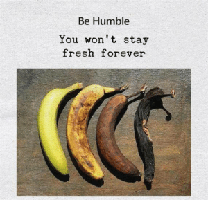 True words..!! (Y): Be Humble  You won't stay  fresh forever True words..!! (Y)