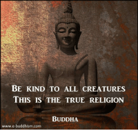 Buddha: BE KIND TO ALL CREATURES  THIS IS THE TRUE RELIGION  BUDDHA  www.e-buddhism.com
