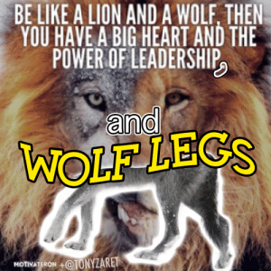 Be Like, Heart, and Lion: BE LIKE A LION AND A WOLE, THEN  YOU HAVE A BIG HEART AND THE  POWER OFLEADERSHIP  ano  WOLF LEGS  MOTIWATERON+TONYZARET