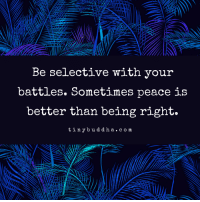 Peace, Com, and Battles: Be selective with your  battles. Sometimes peace is  better than being right.  tinybuddha. com