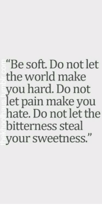 "World, Pain, and The World: ""Be soft. Do not let  the world make  you hard. Do not  let pain make you  hate. Do not let the  bitterness steal  your sweetness."""