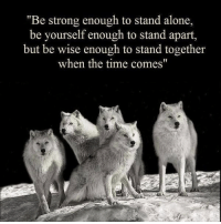 """Being Alone, Memes, and Time: Be strong enough to stand alone,  be yourself enough to stand apart,  but be wise enough to stand together  when the time comes"""" You must be able to adapt under any situation in order to succeed whether it's working alone or being a leader."""