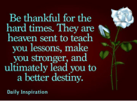 Daily Inspiration: Be thankful for the  hard times. They are  N  heaven sent to teach  ou lessons, make  you stronger, and  ultimately lead you to  a better destiny.  Daily Inspiration Daily Inspiration