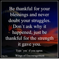 Blessed, Drugs, and Memes: Be thankful for your  blessings and never  doubt your struggles.  Don't ask why it  happened, just be  thankful for the strength  it gave you  Type yes if you agree  Wings of Encouragement Mens Rehab WindwardWay.com 800.815.6308 Ladies CasaCapriRecovery.com 800.957.2411 Featured Drug & Alcohol Detox and Treatment