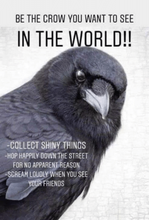 https://t.co/tutuwNy4wk: BE THE CROW YOU WANT TO SEE  IN THE WORLD!!  -COLLECT SHINYTHINGS  -HOP HAPPILY DOWN THE STREET  FOR NO APPARENT REASON  SCREAM LOUDLY WHEN YOU SEE  YOUR FRIENDS https://t.co/tutuwNy4wk