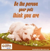 Mercola Com: Be the person  your pels  think you are  Healthy  With Dr. Karen Becker  Presented by Mercola  Healthy Pets Mercola.com