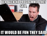 Pro, Programmer Humor, and Fun: BEA BACKEND PRO  OGRAMMER  THEY  IT WOULD BE FUN THEY SAID BACKEND programmer say!!!